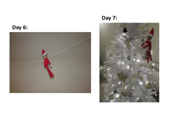 elf-day-6
